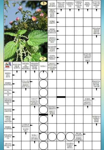 054 Grmolika i jestiva biljka 1
